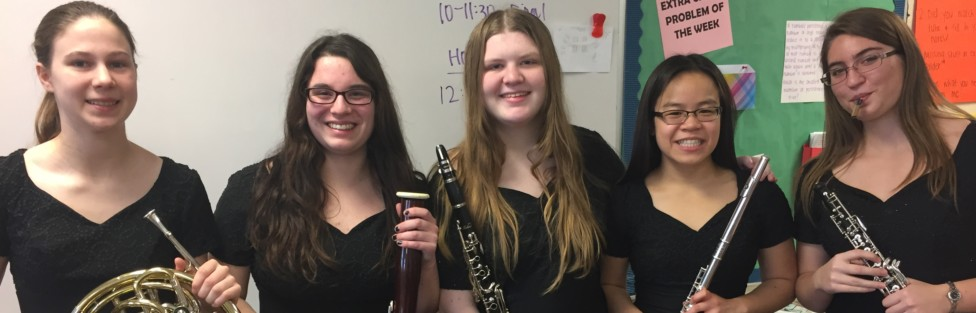 LSHS Musicians Earn Honors at Region 1AA Solo/Ensemble Contest
